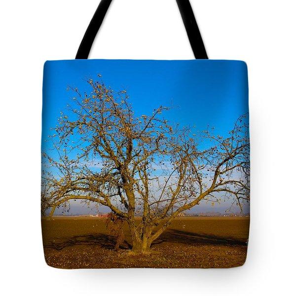 Winter Apple Tree Tote Bag