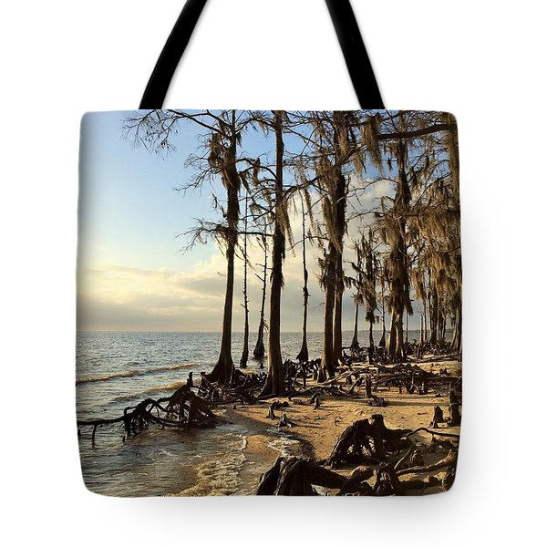 Winter At Fontainebleau State Park, Lake Pontchartrain, La Tote Bag