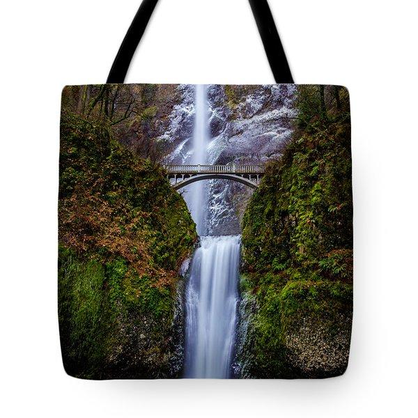 Winter At Multnomah Falls 2 Tote Bag