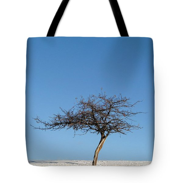 Winter At The Crabapple Tree Tote Bag