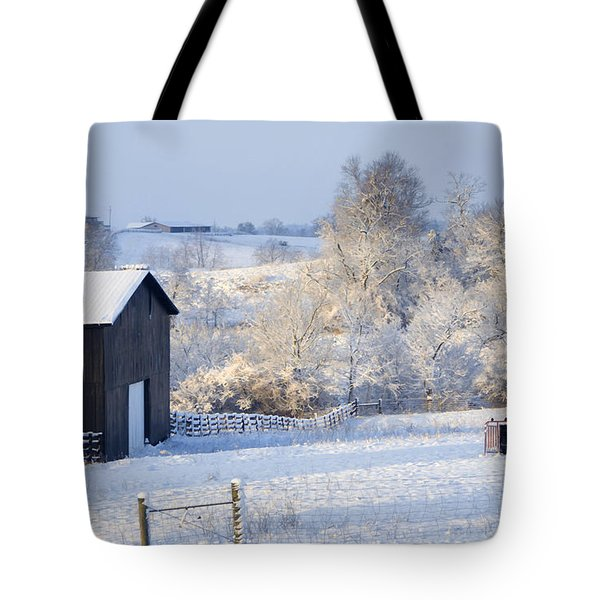Winter Barn 1 Tote Bag