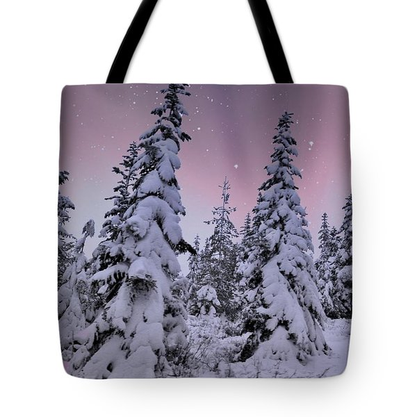 Winter Beauty Tote Bag by Sheila Ping