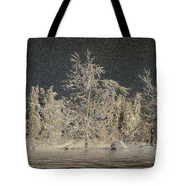 Winter Begins Tote Bag by Lois Bryan