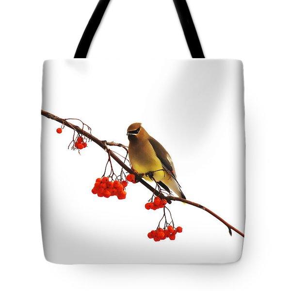 Winter Birds - Waxwing  Tote Bag