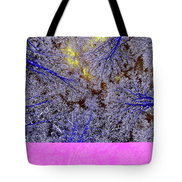 Tote Bag featuring the photograph Winter Blues by Tony Beck