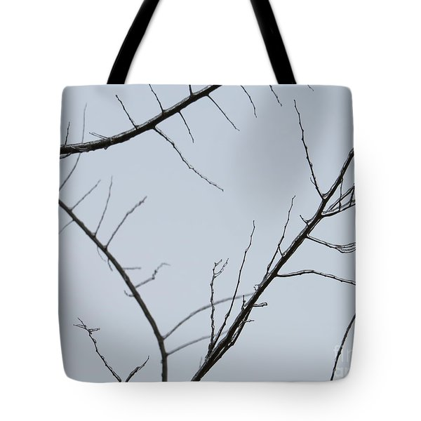 Winter Branches Tote Bag by Craig Walters