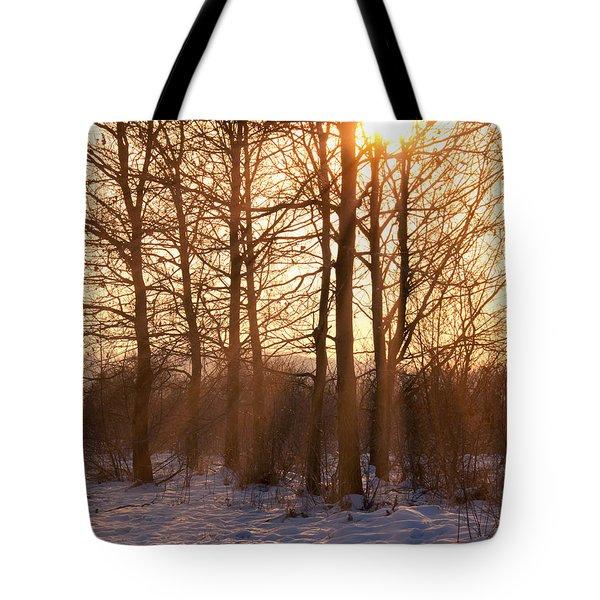 Winter Break Tote Bag by Wim Lanclus