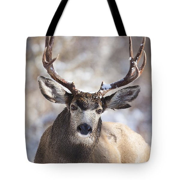 Winter Buck II Tote Bag