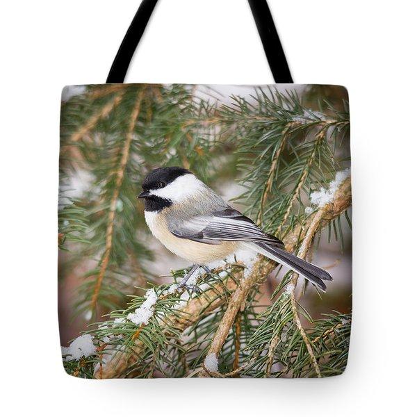 Winter Chickadee Tote Bag