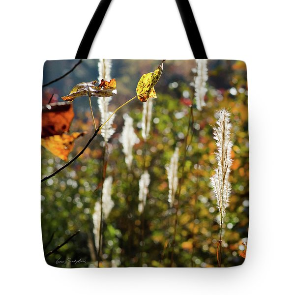 Tote Bag featuring the photograph Winter Color by George Randy Bass