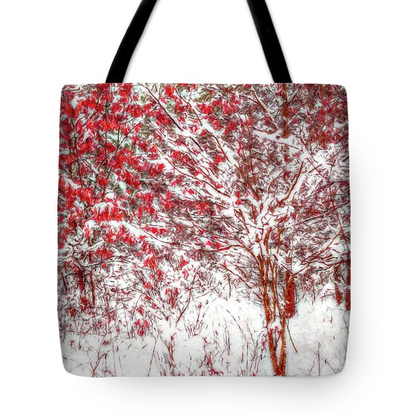 Winter Color  Tote Bag by Randy Steele