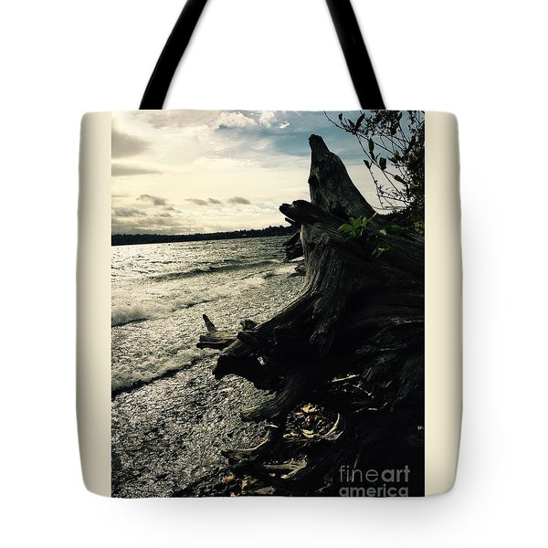 Winter Comes To The Sea Tote Bag