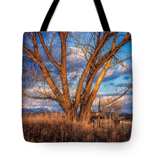 Winter Cottonwood Ranch Landscape Colorado Tote Bag by John Brink