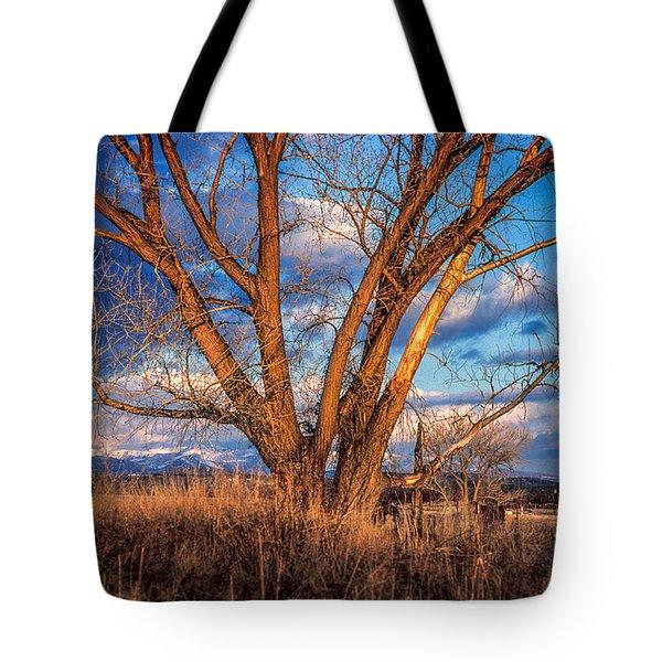 Winter Cottonwood Ranch Landscape Colorado Tote Bag