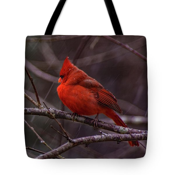 Winter Crimson  Tote Bag