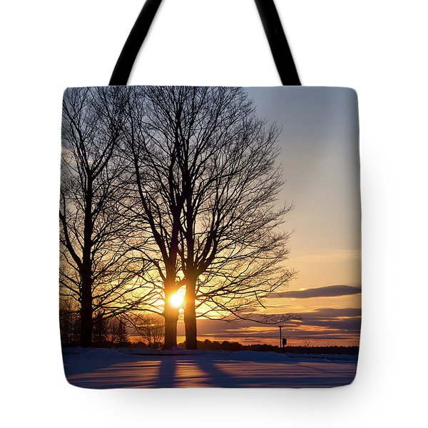 Tote Bag featuring the photograph Winter, Crystal Spring Farm, Brunswick, Maine -78592 by John Bald