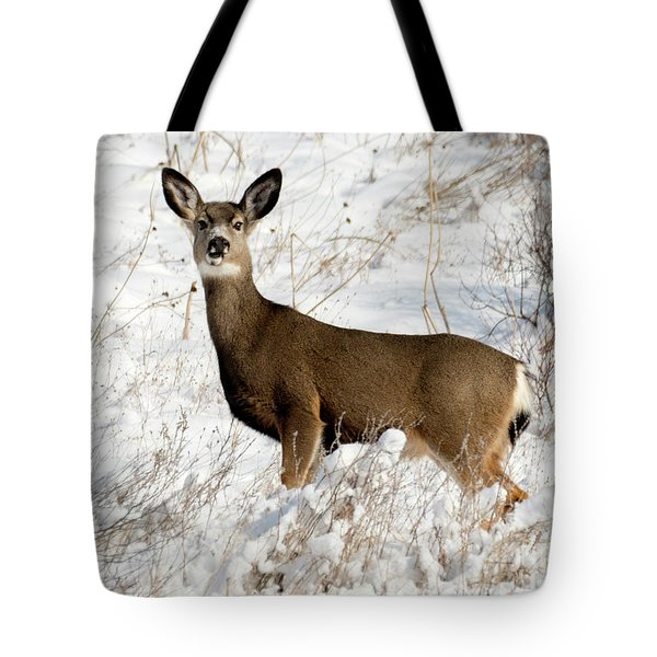 Winter Doe Tote Bag