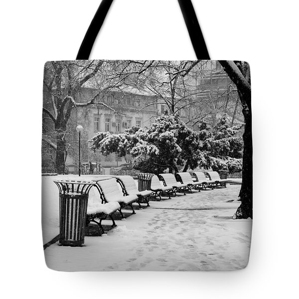 Winter Down The Path Tote Bag by Rae Tucker
