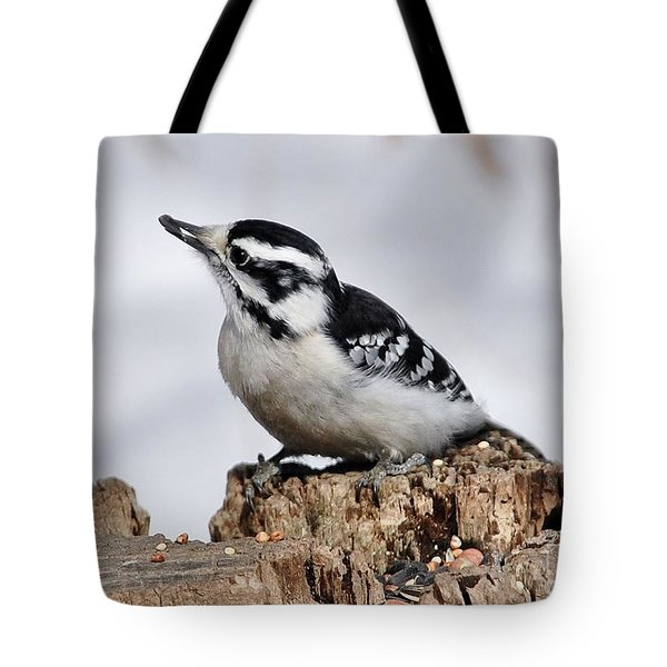 Winter Downy Woodpecker Tote Bag
