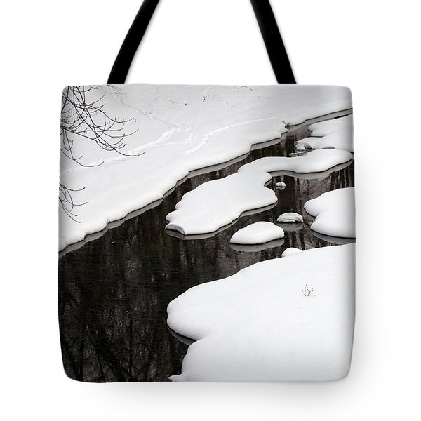 Tote Bag featuring the photograph Winter Dreams by Paula Guttilla