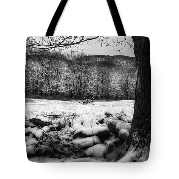 Tote Bag featuring the photograph Winter Dreary Square by Bill Wakeley