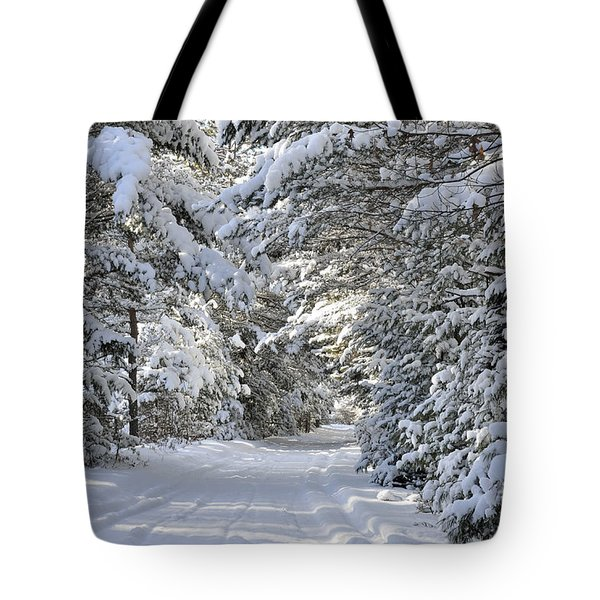 Winter Escape Tote Bag by Birgit Tyrrell