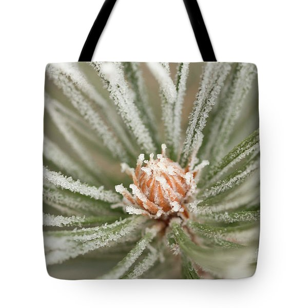 Tote Bag featuring the photograph Winter Evergreen by Ana V Ramirez