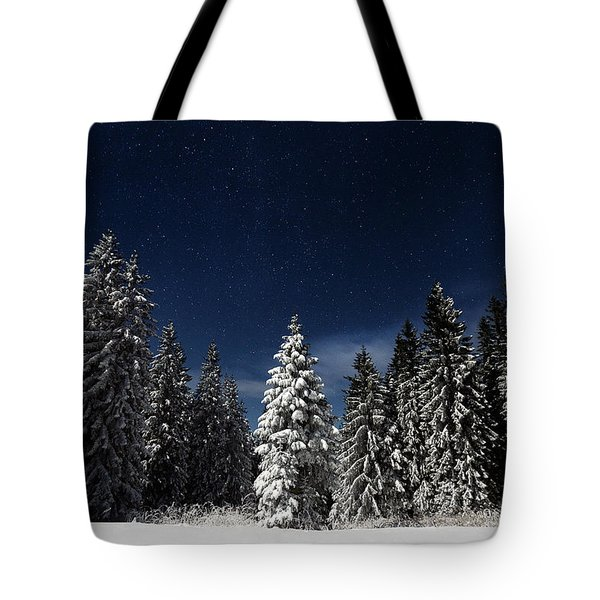 Winter Fairytale Tote Bag by Paul Itkin