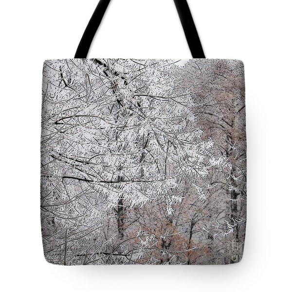Winter Fantasy Tote Bag by Craig Walters
