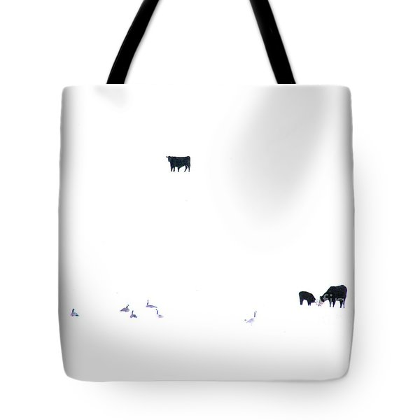 Winter, Feed Zone Tote Bag
