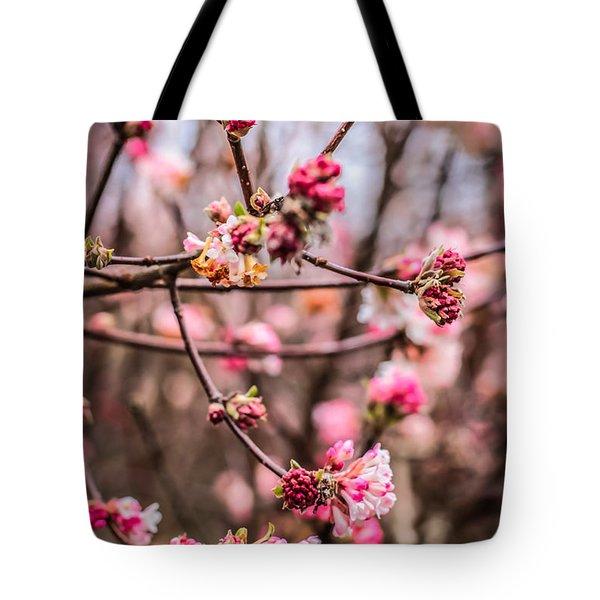 Winter Flowers Tote Bag by David Warrington
