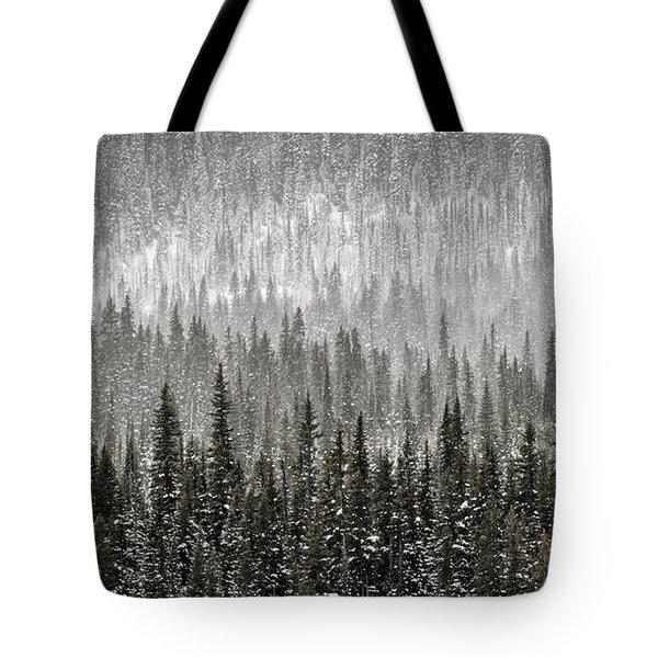 Winter Forest Tote Bag by Brad Allen Fine Art