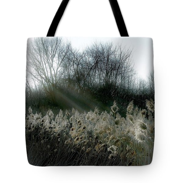 Tote Bag featuring the photograph Winter Fringe by Kendall McKernon