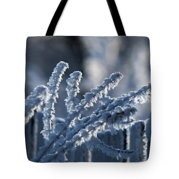 Tote Bag featuring the photograph Quest For Heartiness by Silke Brubaker
