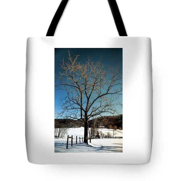 Tote Bag featuring the photograph Winter Glow by Karen Wiles