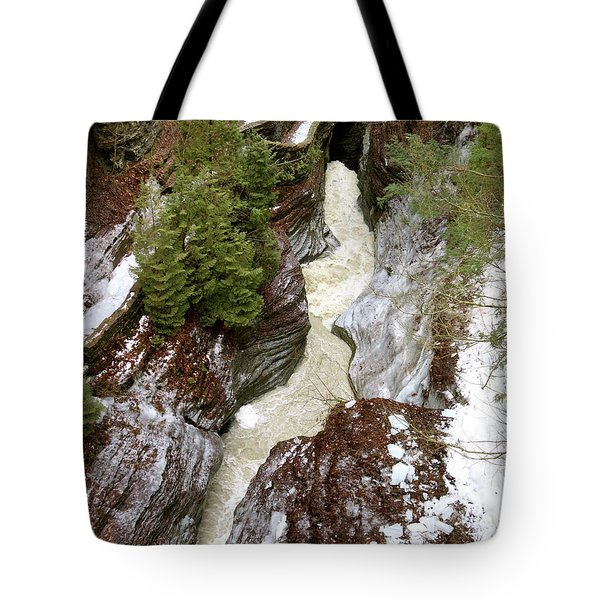 Winter Gorge Tote Bag