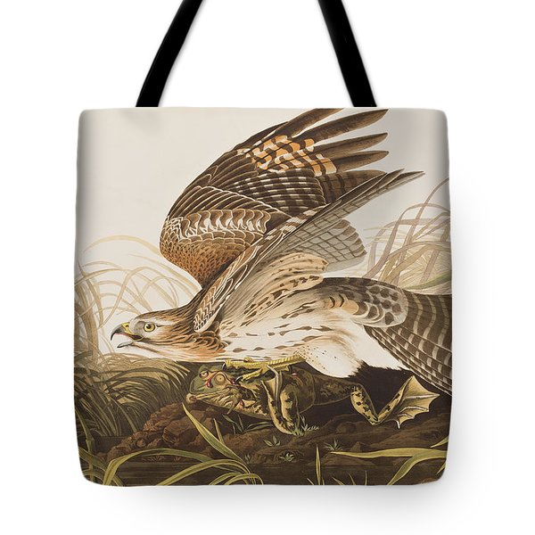 Winter Hawk Tote Bag by John James Audubon