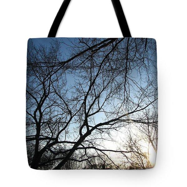 Winter Haze Tote Bag