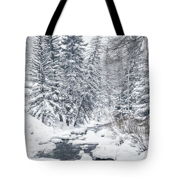 Winter Heaven Tote Bag