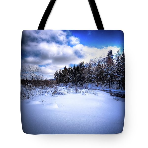 Tote Bag featuring the photograph Winter Highlights by David Patterson