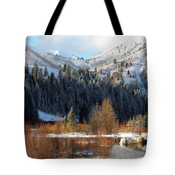 Winter I Big Cottonwood Canyon  Tote Bag