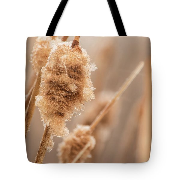 Tote Bag featuring the photograph Winter Ice by Tyson Kinnison