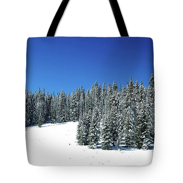 Winter In Colorado  Tote Bag