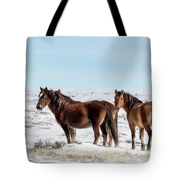 Winter In Sand Wash Basin - Wild Mustangs Tote Bag