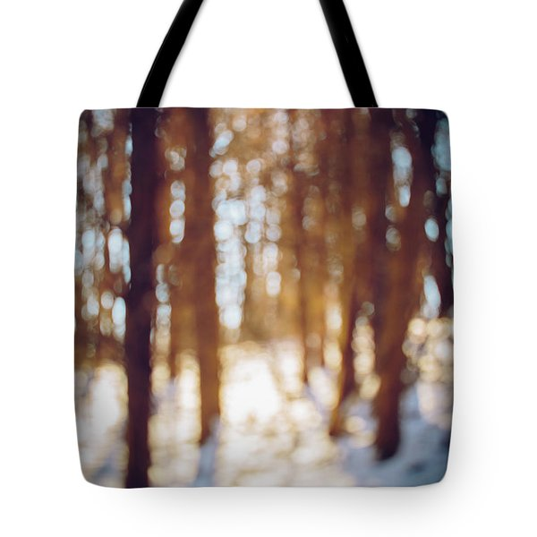 Winter In Snow Tote Bag