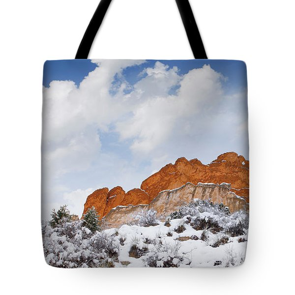 Tote Bag featuring the photograph Winter In Spring by Tim Reaves