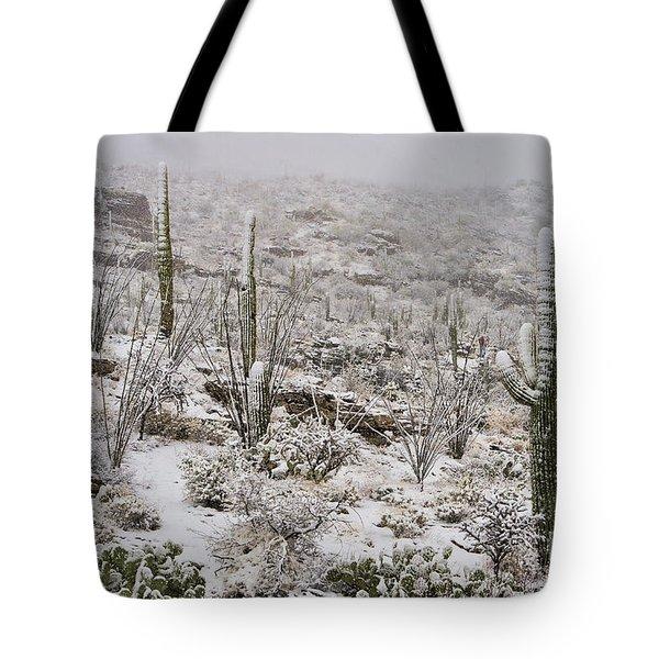 Winter In The Desert Tote Bag by Sandra Bronstein