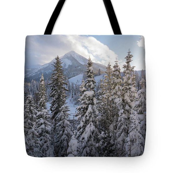 Winter In The Wasatch Tote Bag