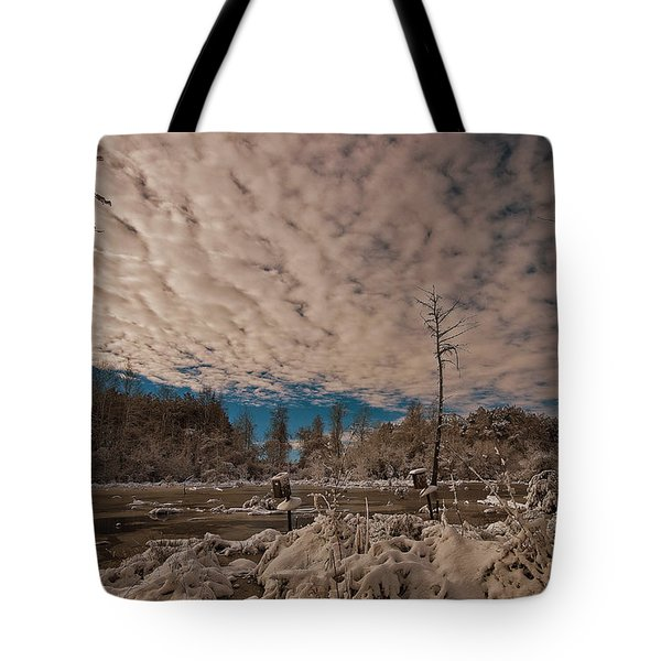 Winter In The Wetlands Tote Bag by John Harding
