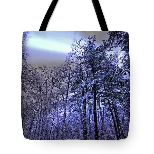 Tote Bag featuring the photograph Winter In The Woods by Jackson Pearson
